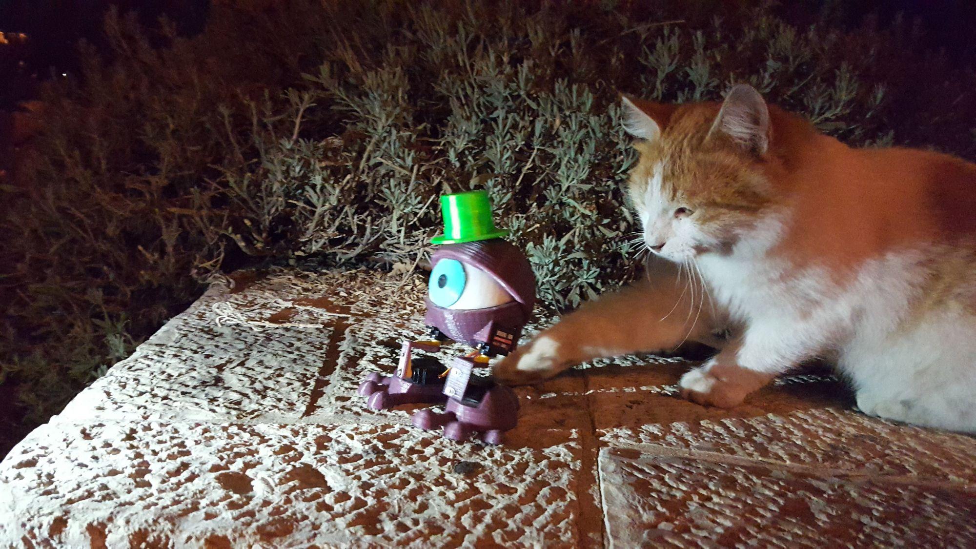 Making Purple Eye DIY Dancing Robot