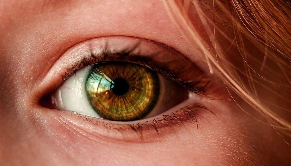 26 de Maio - Dia Nacional do Combate ao Glaucoma