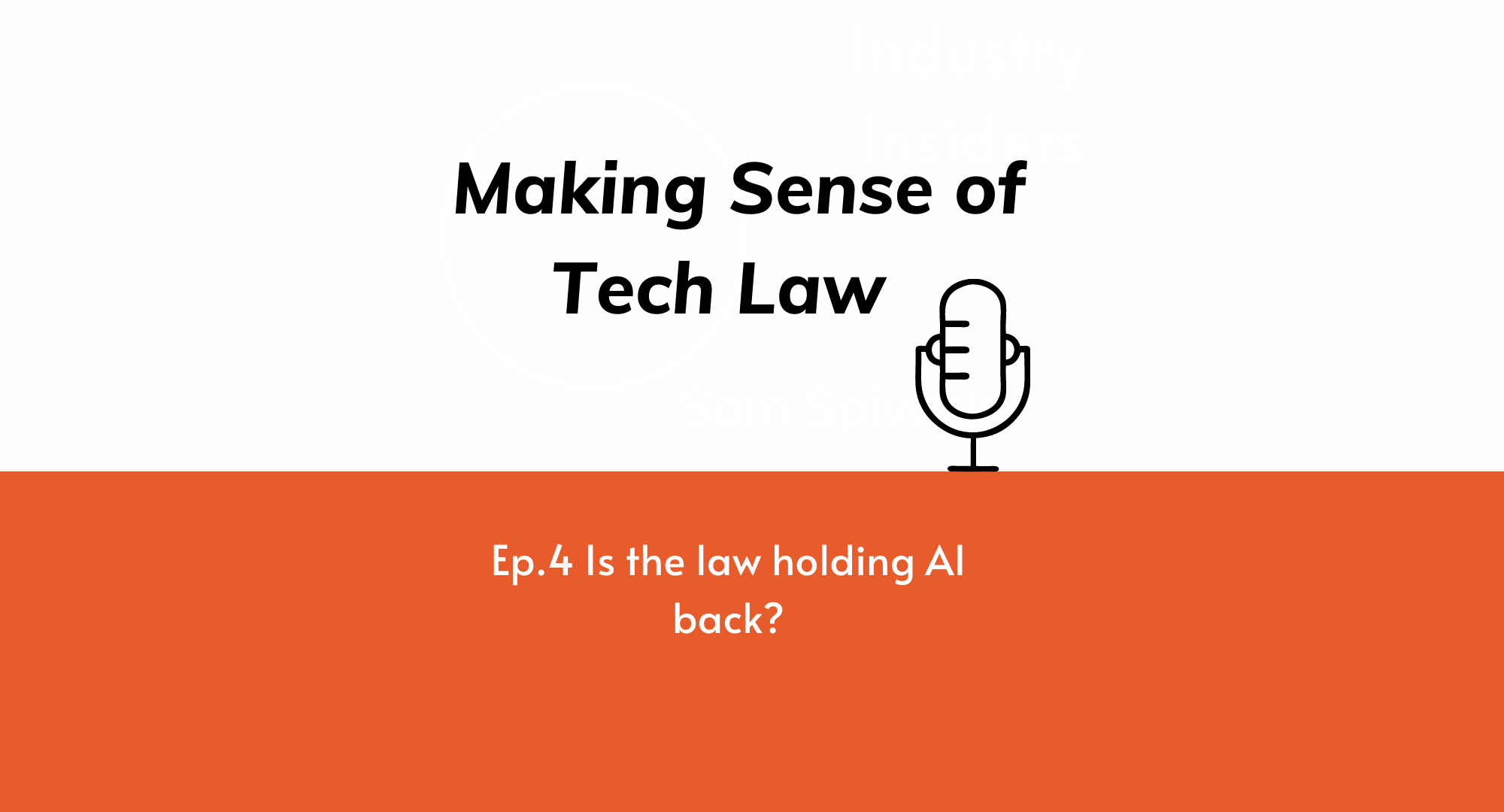 Making Sense of Tech Law Episode 4: Is the law holding AI back?