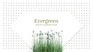 Template Theme : Evergreen
