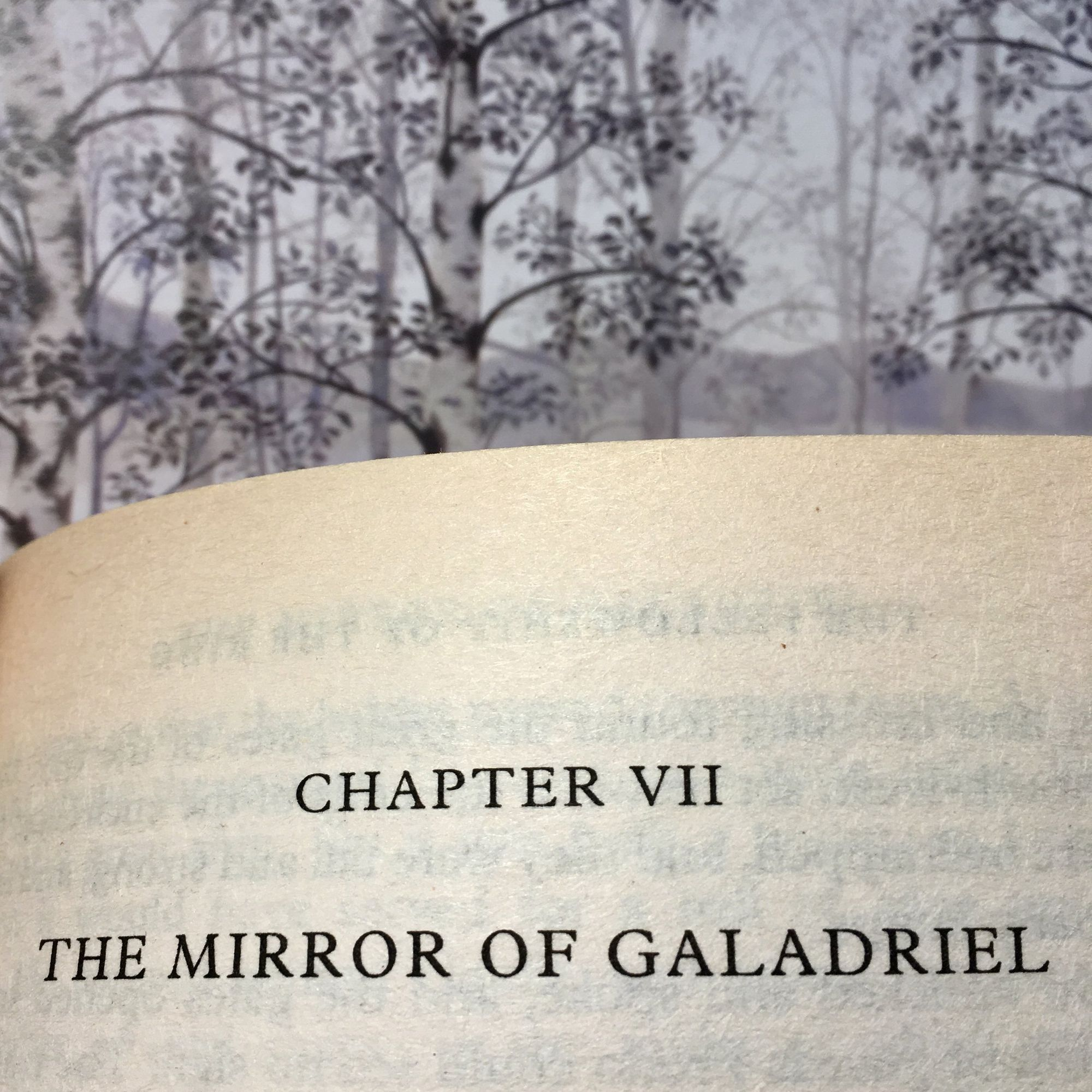 The Fellowship of The Ring: The Mirror of Galadriel
