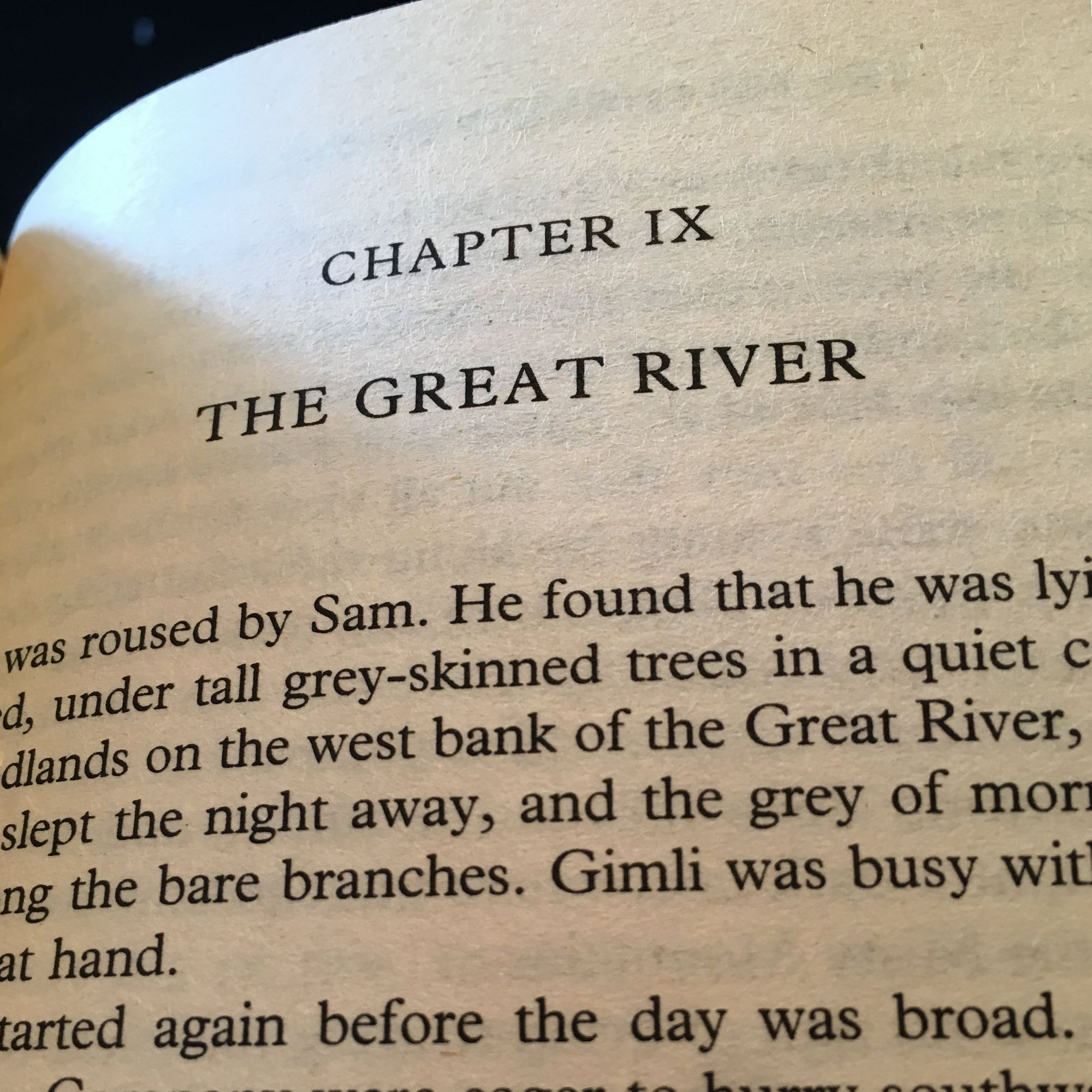 The Fellowship of the Ring: The Great River