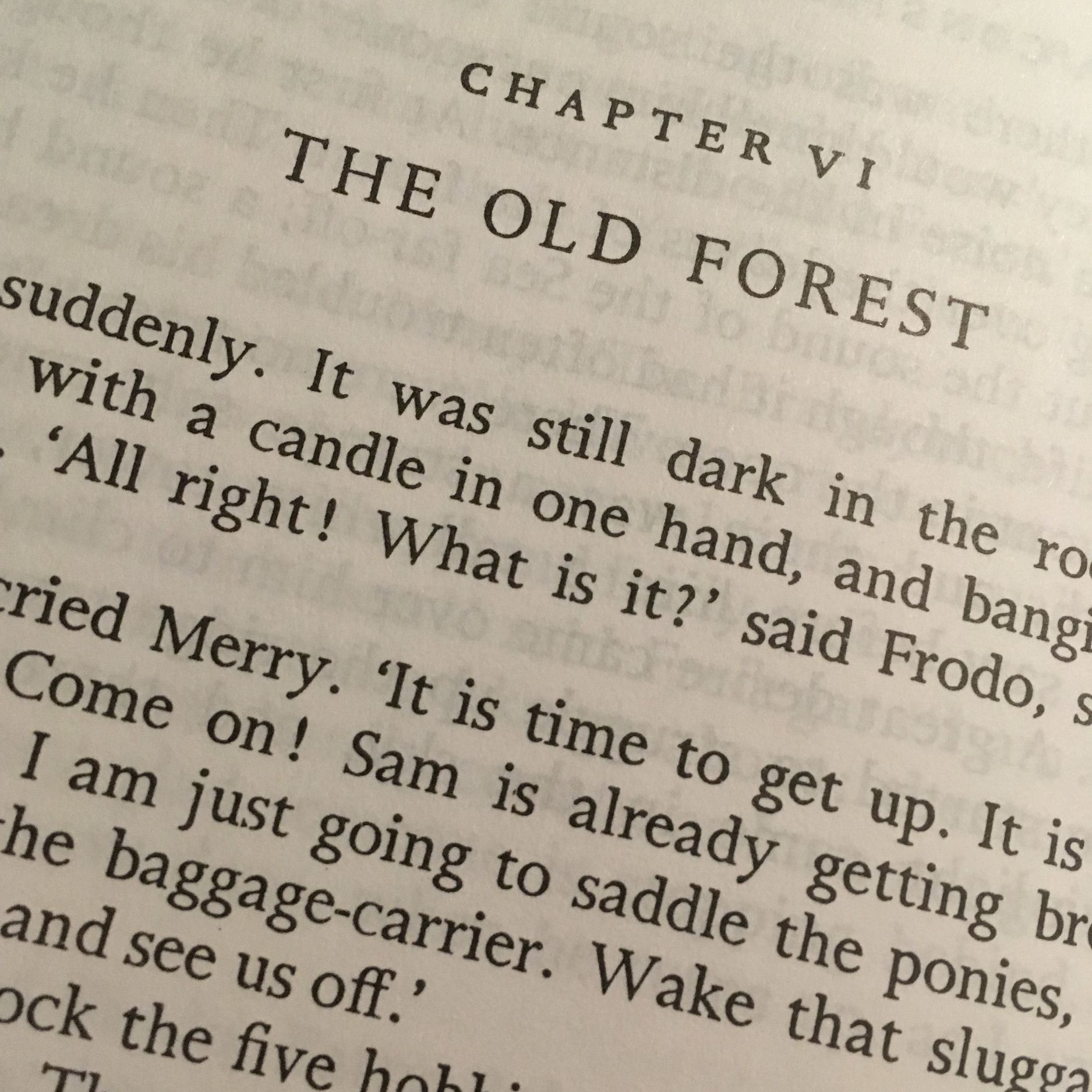 The Fellowship of The Ring: The Old Forest