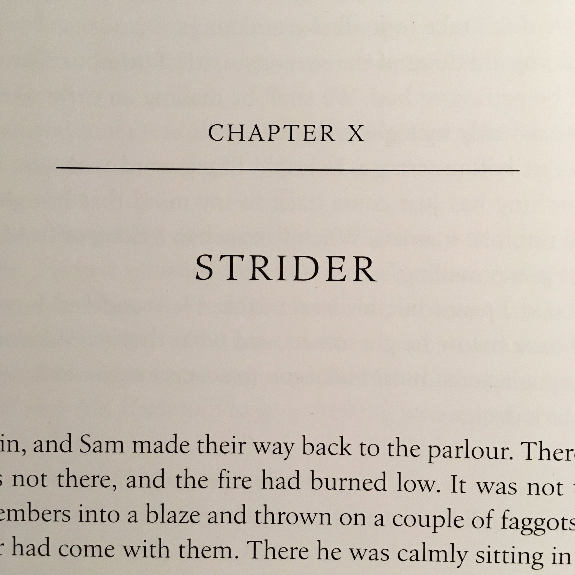 The Fellowship of The Ring: Strider