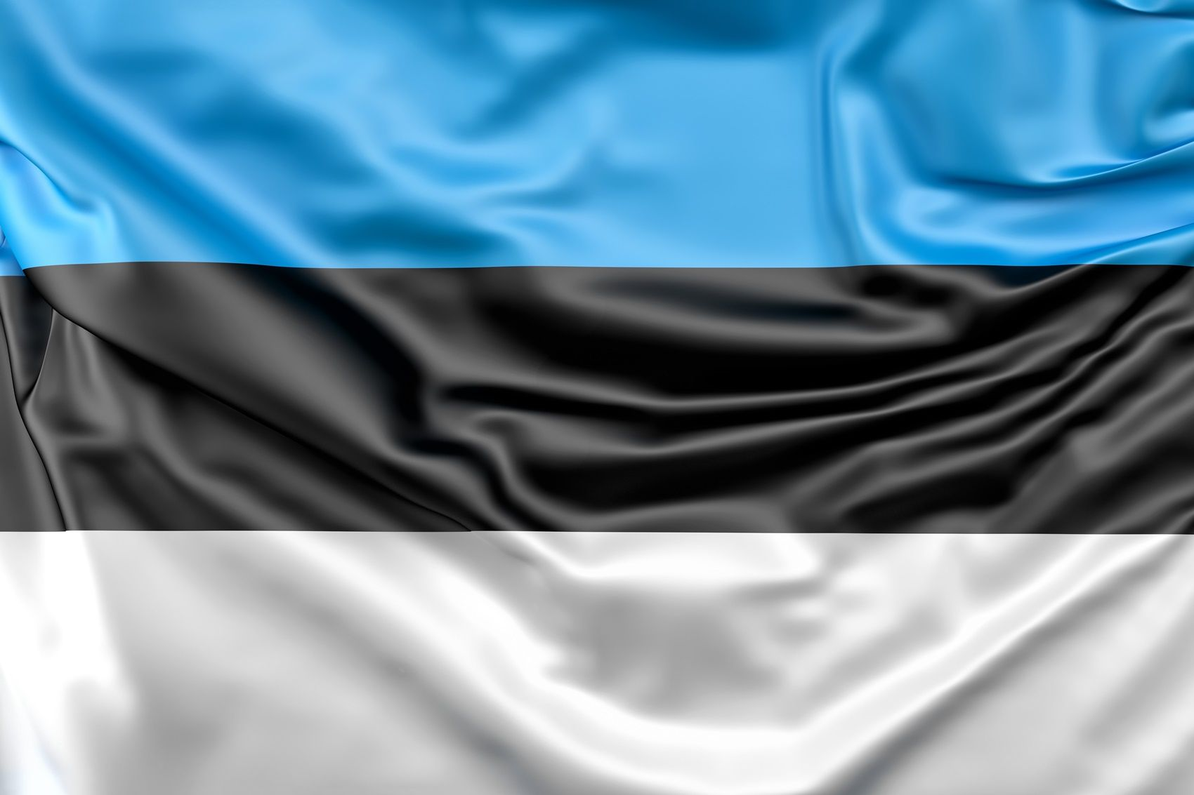 How does the Estonian healthcare system work?