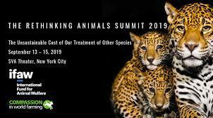 "Last Day of the ""Rethinking Animals"" Summit"
