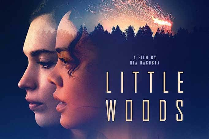 Writer-Director Nia DaCosta Scored Big with Little Woods