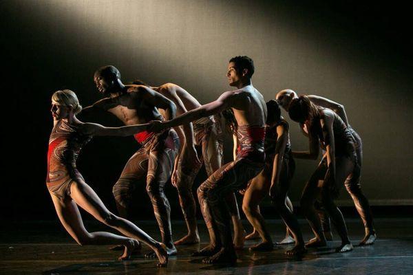Elisa Monte Dance: Movement as an Artistic Political Force