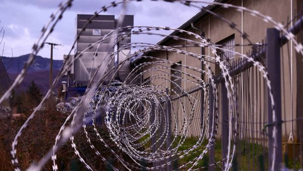 Calls for Emergency Release for Nonviolent Cannabis Inmates: Covid-19