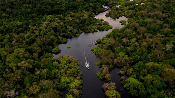 International Rivers Calls for Global Action