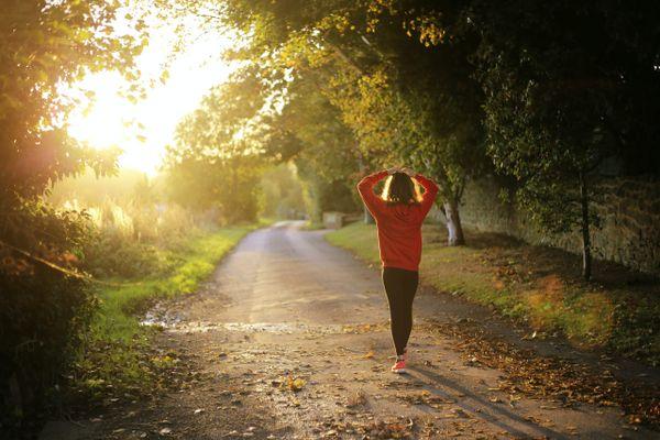 How to Maintain Mental Health Using Psilocybin