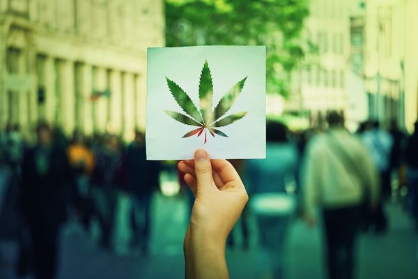 NJ Adult-Use Cannabis BillCritiqued for Lack of Equity