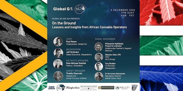 Global Go on Cannabis in South Africa