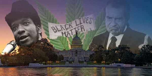 """House Passes Historic Vote to Federally Decriminalize Cannabis: Critics Call MORE Act the """"Antithesis of Equity"""""""