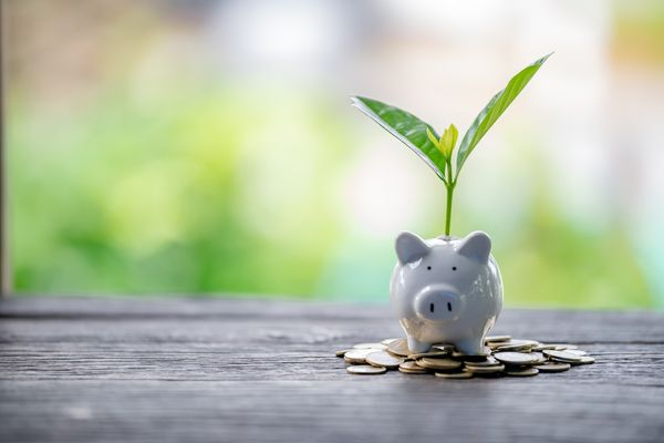 Environmental, Social, and Corporate Governance: What COVID-19 Taught Us about Sustainable Investment