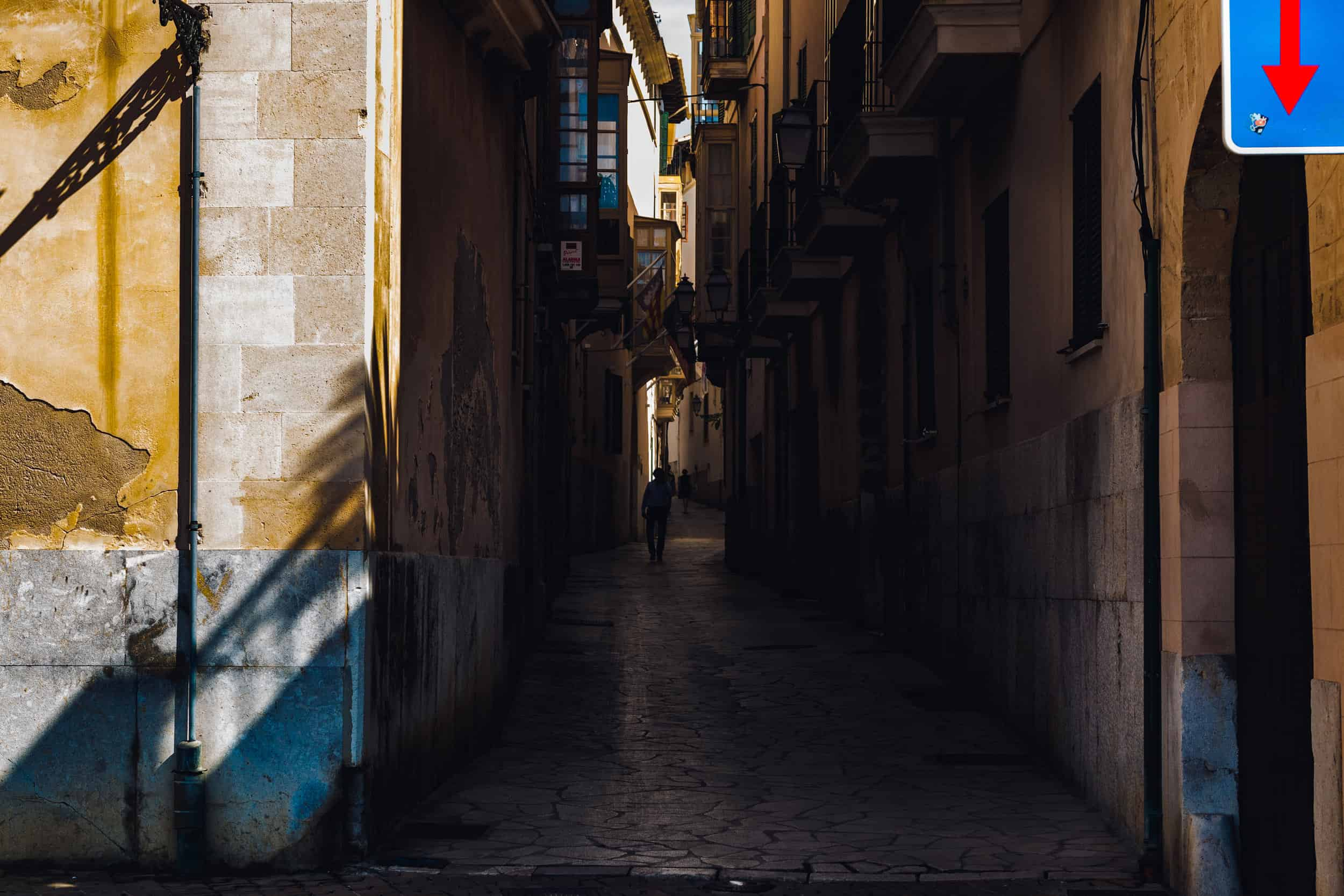 Covid 19 Chronicle: A Film on Mental Health While Under Quarantine in Spain
