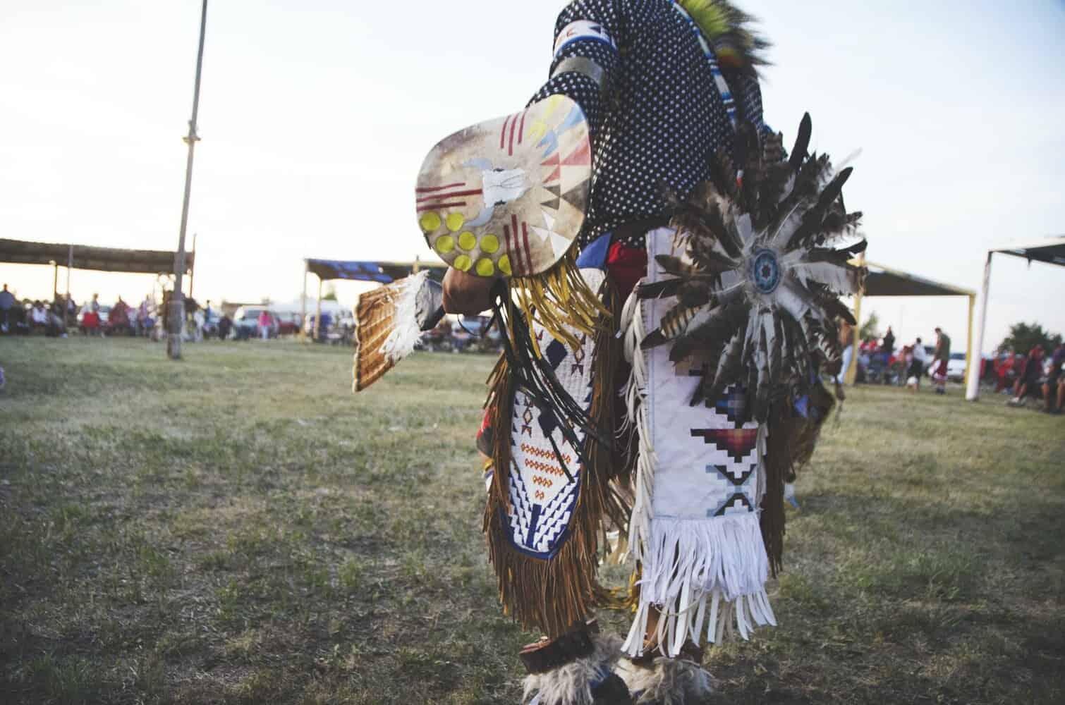 Indigenous Leaders in the US: Activist Spotlight on Vine Deloria Jr.