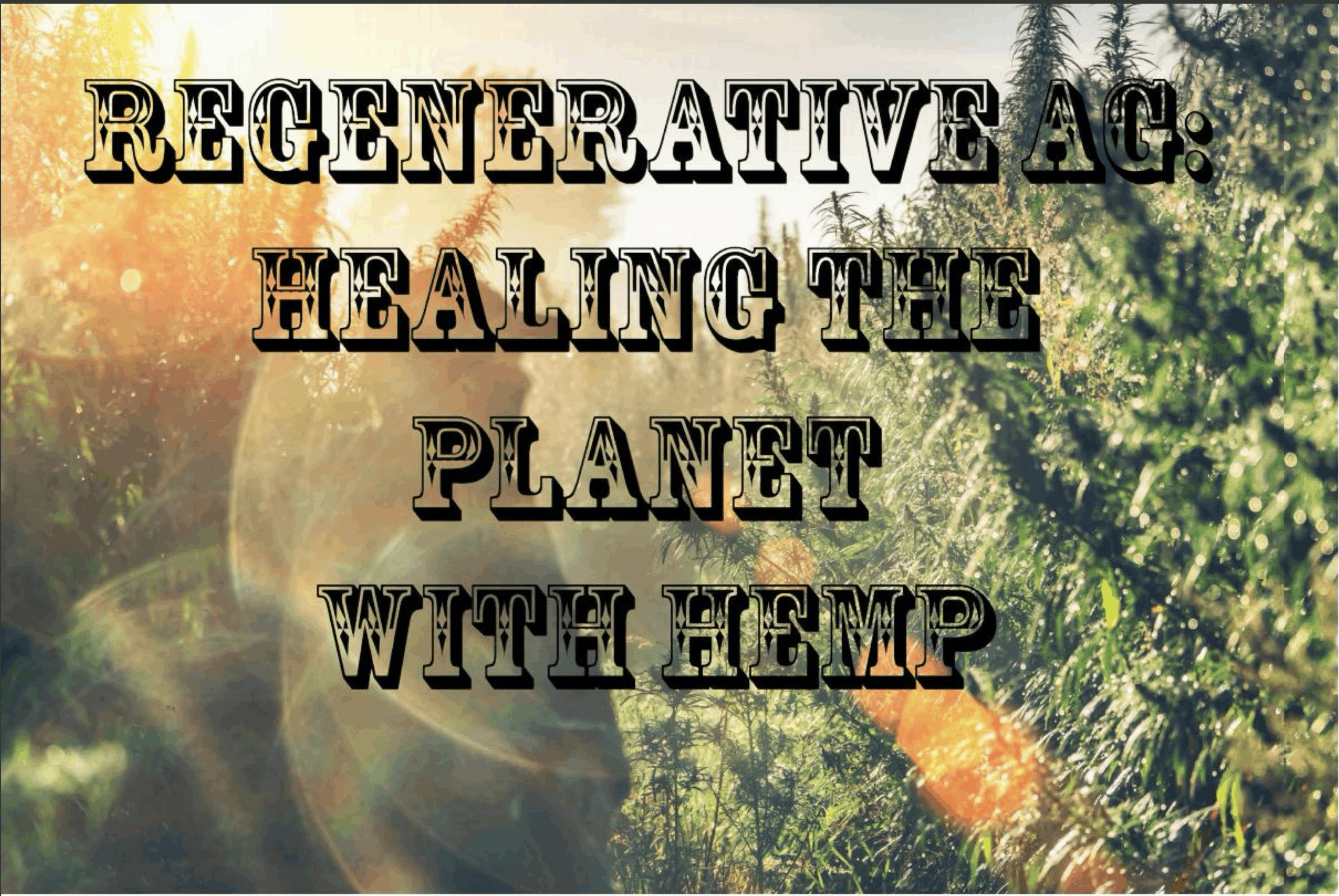 Regenerative Agriculture and the Power of Hemp to Repair Our Environment
