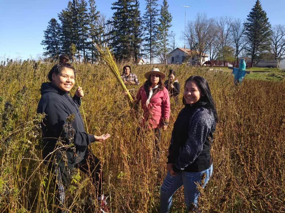 Winona LaDuke and her farm team harvest hemp for fiber and textiles at Winona's Hemp & Heritage Farm in northern Minnesota.