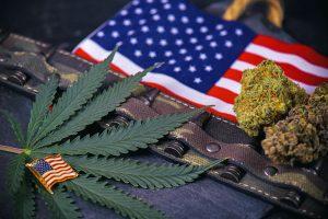 cannabis, veteerans, PTSD