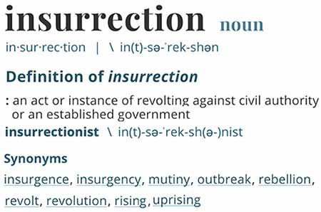 insurrectionist definition