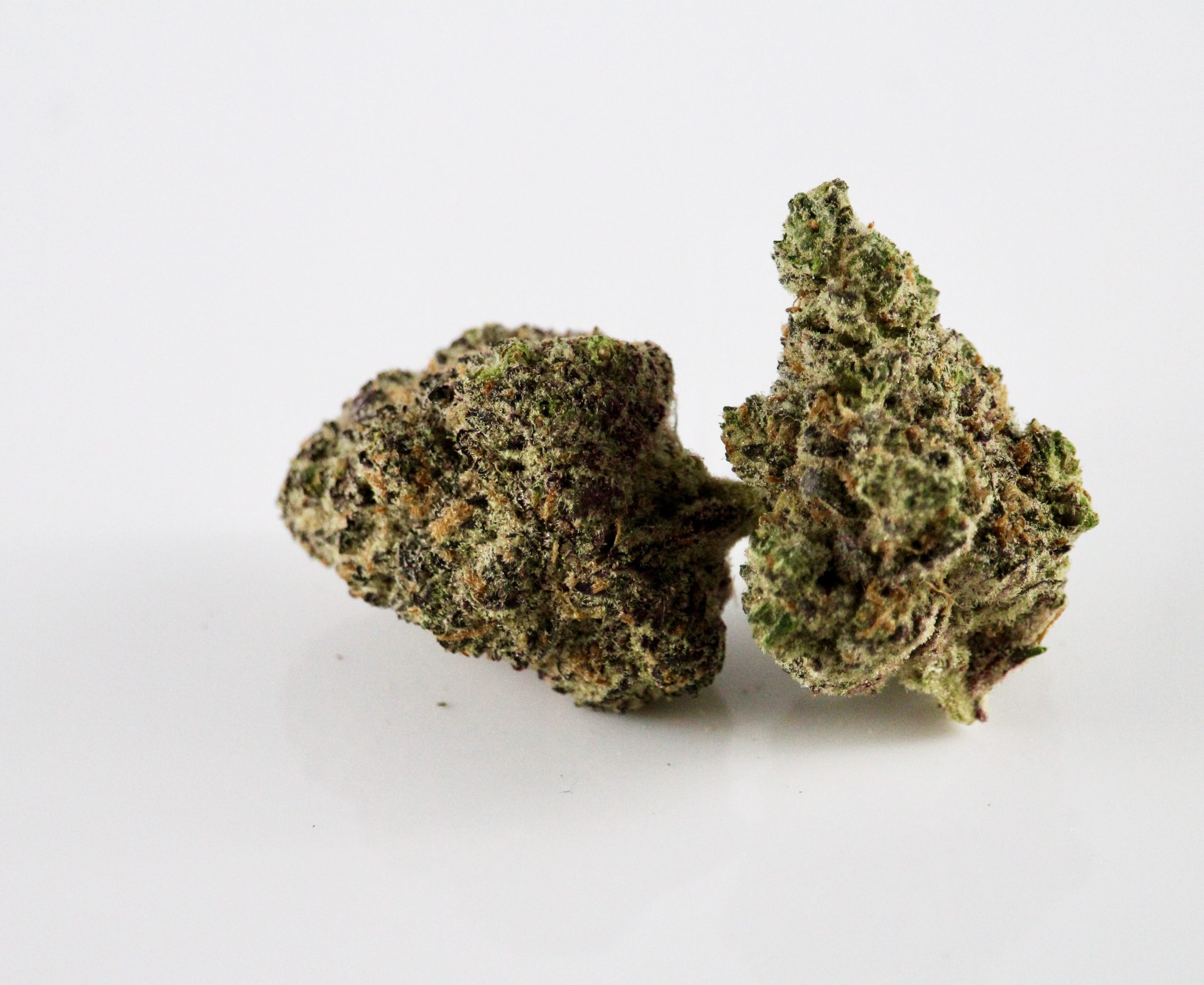 A picture of two cannabis buds.