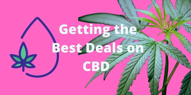 Getting the Best Deals on Your CBD Purchases