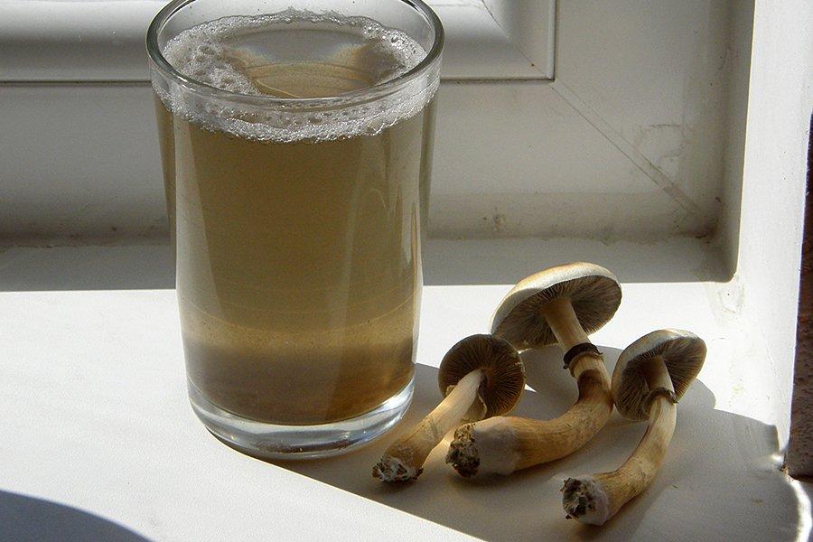 Mushrooms next to a glass.